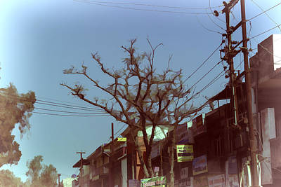 Typical Scene In A Street In A Small Town In India Art Print by Ashish Agarwal