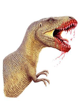 Paleozoology Photograph - Tyrannosaurus Rex by Deagostini/uig