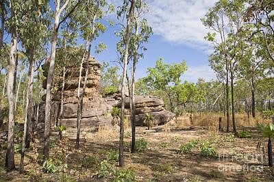 Ubirr Kakadu Australia Original