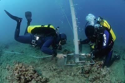 Underwater Survey Print by Photostock-israel