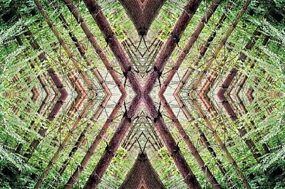 Psychedelic Photograph - Unnatural 37 by Giovanni Cafagna