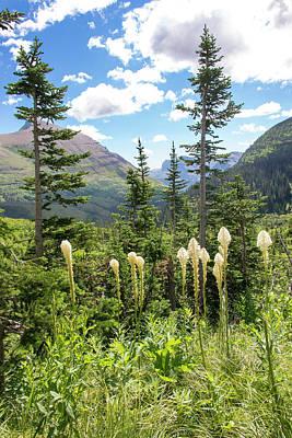 Trish Photograph - Us, Mt, Glacier National Park by Trish Drury