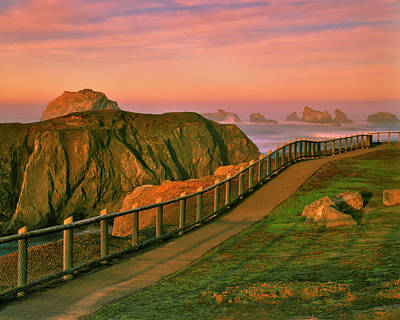 Wayside Photograph - Usa, Oregon, Bandon by Jaynes Gallery