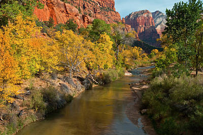 Zion Canyon Photograph - Usa, Utah, Zion National Park by Jaynes Gallery