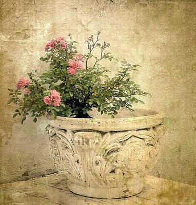 Vintage Blossom Art Print by Jessica Jenney