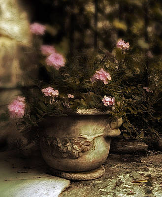 Planter Wall Art - Photograph - Vintage Planter by Jessica Jenney