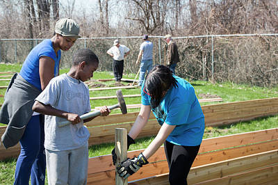 African-american Photograph - Volunteers Building Raised Beds by Jim West
