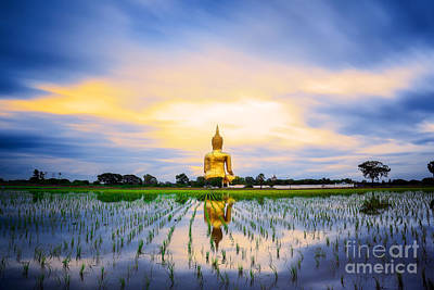 Unseen Photograph - Wat Muang With Gilden Giant Big Buddha Statue by Anek Suwannaphoom