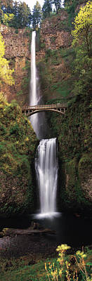 Multnomah Falls Waterfall Photograph - Waterfall In A Forest, Multnomah Falls by Panoramic Images