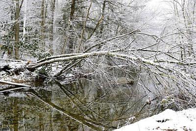 Winter Along Cranberry River Art Print by Thomas R Fletcher