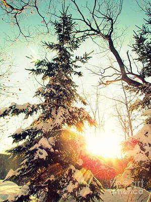 Photograph - Winter Sunset by France Laliberte