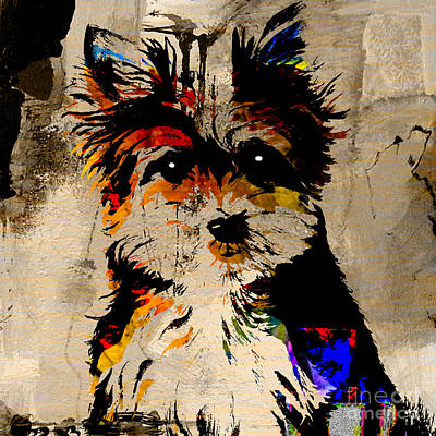 Puppies Mixed Media - Yorkshire Terrier by Marvin Blaine