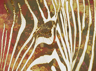 Stripes Mixed Media - Zebra Art Stylised Drawing Art Poster by Kim Wang