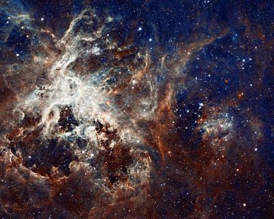 Nebular Photograph - 30 Doradus by Ricky Barnard