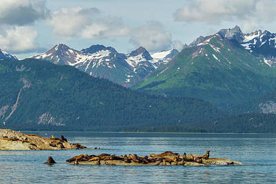 Usa, Alaska, Glacier Bay National Park Art Print