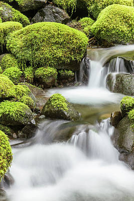 Usa, Washington, Olympic National Park Art Print by Jaynes Gallery