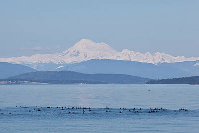 Baker Island Photograph - Usa, Washington, San Juan Islands by Jaynes Gallery