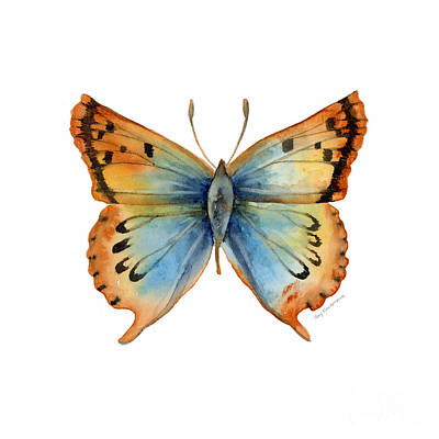 Animals Paintings - 33 Opal Copper Butterfly by Amy Kirkpatrick