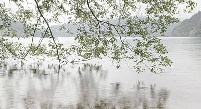 Overhang Photograph - Usa, Washington, Olympic National Park by Jaynes Gallery