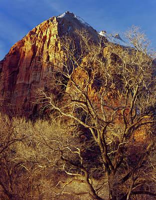 Colorful Colorado Photograph - Zion National Park, Utah by Scott T. Smith