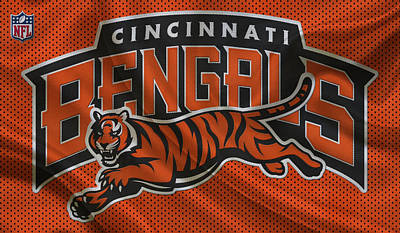 Cincinnati Photograph - Cincinnati Bengals by Joe Hamilton