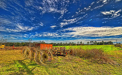 Art Print featuring the photograph 3596-602-201 by Lewis Mann