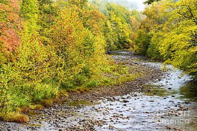 West Fork Photograph - Williams River Autumn by Thomas R Fletcher