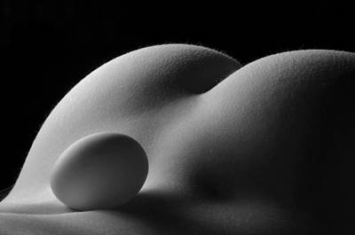 Photograph - 3679 Egg Scape by Chris Maher