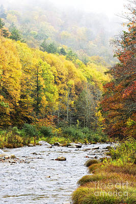 Williams River Scenic Backway Photograph - Williams River Autumn by Thomas R Fletcher