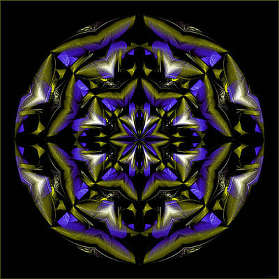 Digital Art - Beautiful Crystal Circle by Gillian Owen