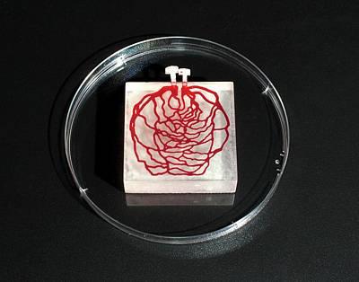 3d Printed Tissue Simulation Art Print
