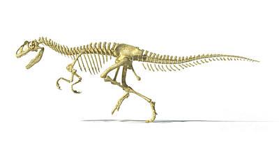 Allosaurus Digital Art - 3d Rendering Of An Allosaurus Dinosaur by Leonello Calvetti