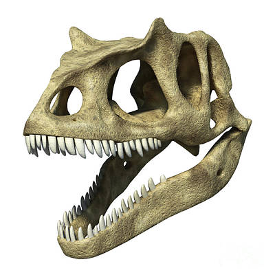 3d Rendering Of An Allosaurus Skull Art Print by Leonello Calvetti
