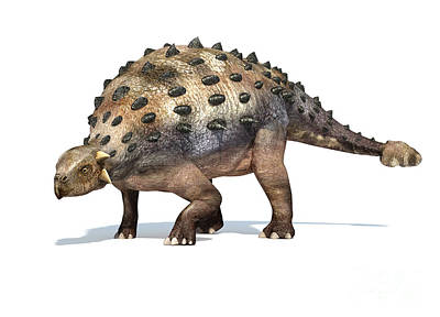 Prehistoric Digital Art - 3d Rendering Of An Ankylosaurus by Leonello Calvetti