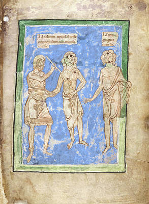 12th Century Photograph - 12th Century Medical Manuscript by British Library
