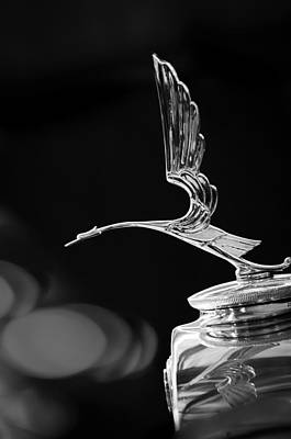 Hood Ornament Photograph - 1929 Cadillac Hood Ornament by Jill Reger
