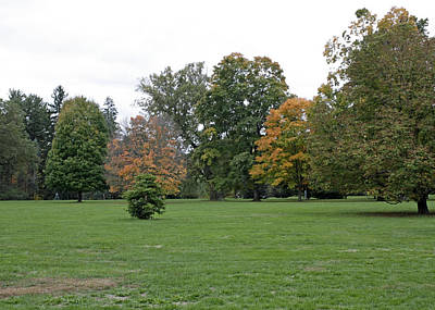 Olympic Sports - An Autumn view at the Vanderbilt Estate by James Connor