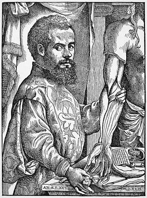 Andreas Vesalius (1514-1564) Art Print