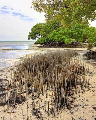 Photograph - Anne's Beach-2 by Rudy Umans