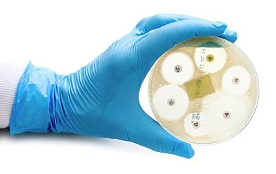 Antibiotic Sensitivity Test Art Print by Aberration Films Ltd