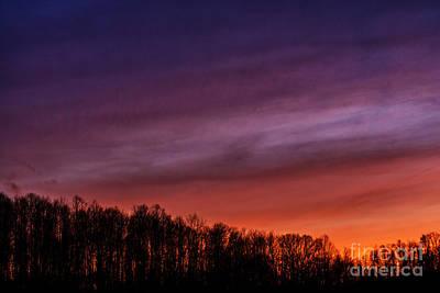 Moody Trees - Appalachian Afterglow by Thomas R Fletcher