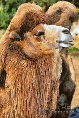 Camel Painting - Bactrian Camel by George Atsametakis