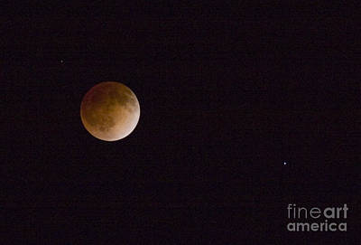 Steven Krull Royalty-Free and Rights-Managed Images - Blood Moon by Steven Krull