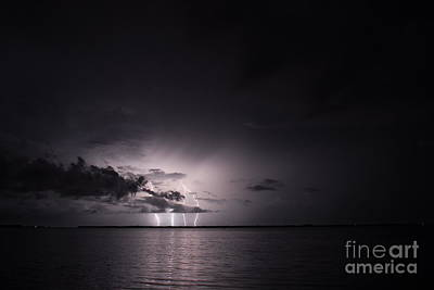 Lightning Photograph - 4 Bolts From Above by Quinn Sedam