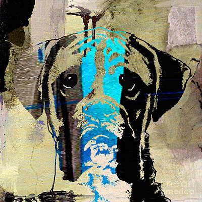 Dogs Mixed Media - Boxer by Marvin Blaine