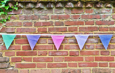 Gingham Photograph - Bunting by Tom Gowanlock