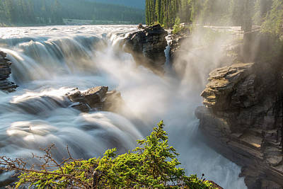 Athabasca Falls Photograph - Canada, Alberta, Jasper National Park by Jamie and Judy Wild