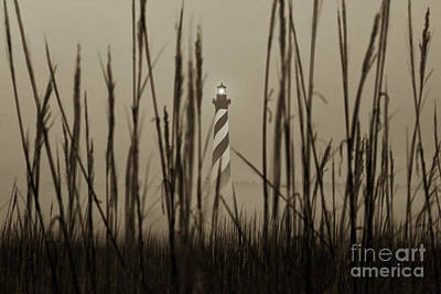 Photograph - Cape Hatteras Lighthouse by Tony Cooper