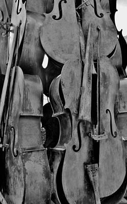 4 Cellos Black And White Art Print