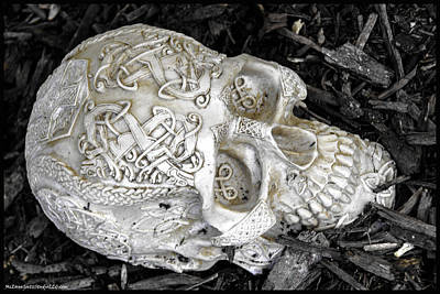 Halloween Photograph - Celtic Skulls Symbolic Pathway To The Other World by LeeAnn McLaneGoetz McLaneGoetzStudioLLCcom